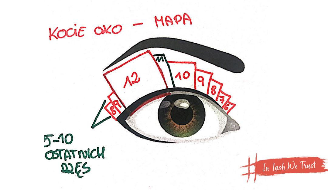 Schemat kociego oka