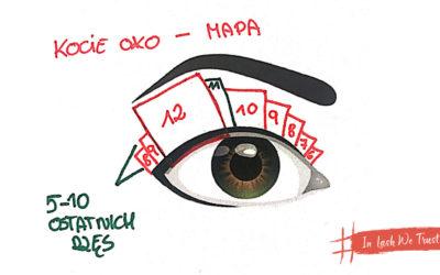 Kocie oko – efekt uniwersalny?